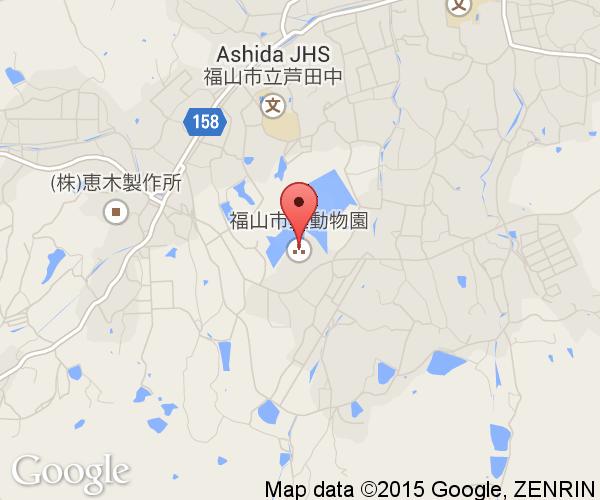 Fukuyama City Zoological Park Next Stop Japan