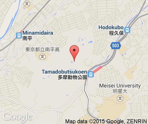 Tama Zoological Park Next Stop Japan